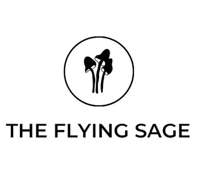 TheFlyingSage